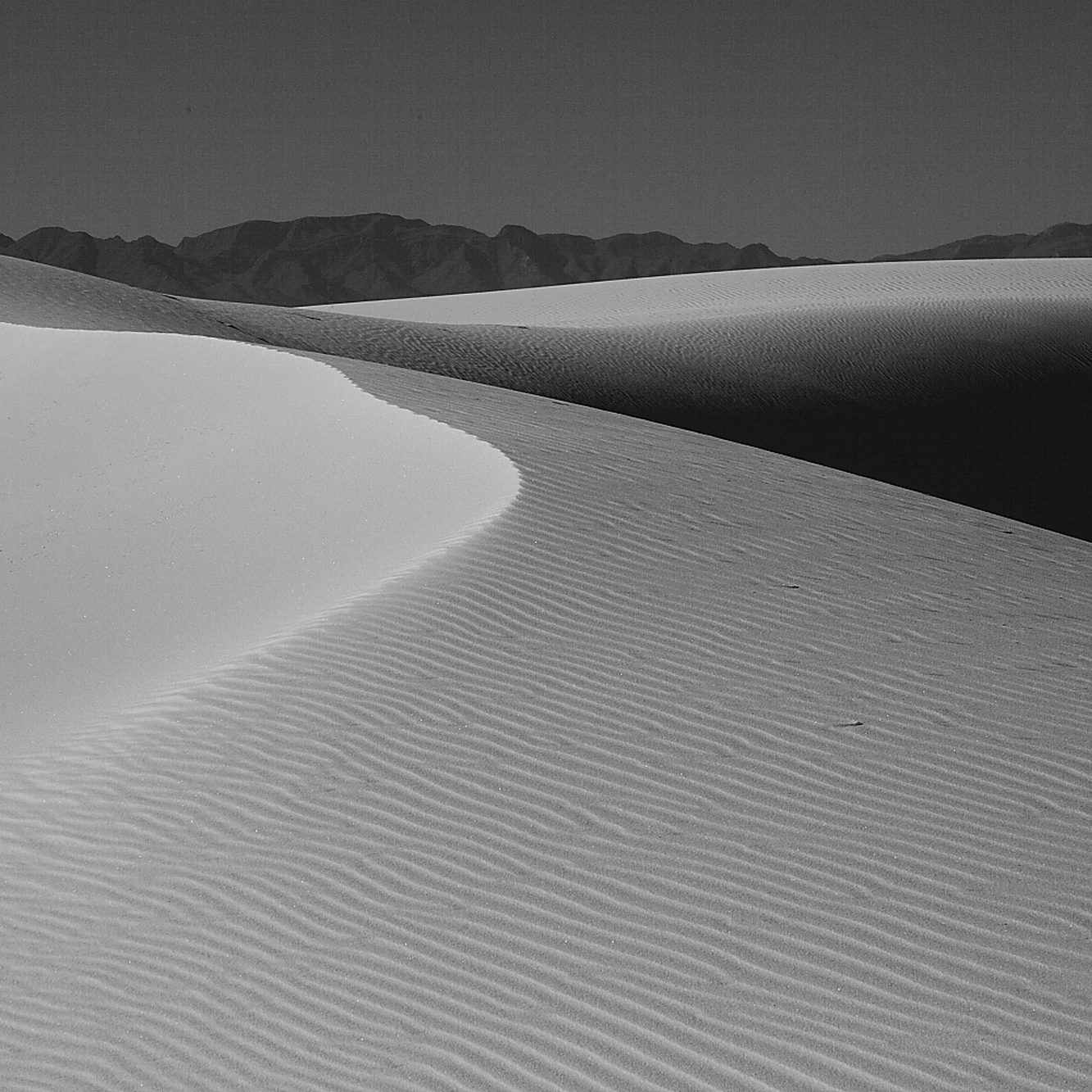 Black & White Sand Dunes